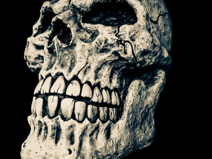 The Skull @metalbar Tokyo